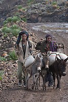 Shepherds at Simien Mountains N.P., Ethiopia