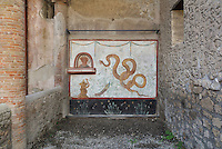 Lararium, a shrine dedicated to the guardian spirits of the household, with niche and painted peacock and snakes, including the snake god Agathodaimon, in the Casa del Criptoportico, or House of the Cryptoporticus, Pompeii, Italy. The lararium adjoins a peristyle garden and has a lower black border painted with plants and flowers. The house is one of the largest in Pompeii and was owned by the Valerii Rufi family and built in the 3rd century BC. It takes its name from the underground corridor or cryptoporticus used as a wine cellar and lit by small windows. Pompeii is a Roman town which was destroyed and buried under 4-6 m of volcanic ash in the eruption of Mount Vesuvius in 79 AD. Buildings and artefacts were preserved in the ash and have been excavated and restored. Pompeii is listed as a UNESCO World Heritage Site. Picture by Manuel Cohen