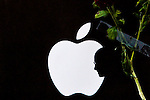 Apple mastermind Steve Jobs dies at 56