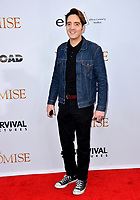 David Dastmalchian at the premiere for &quot;The Promise&quot; at the TCL Chinese Theatre, Hollywood. Los Angeles, USA 12 April  2017<br /> Picture: Paul Smith/Featureflash/SilverHub 0208 004 5359 sales@silverhubmedia.com