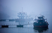 Tourist passenger cruiser boats moored on the Yangtze River, China