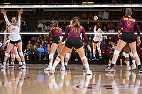 STANFORD, CA - October 15, 2016: Halland McKenna at Maples Pavilion. The Cardinal defeated the Arizona State Sun Devils 3-1.