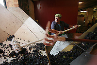 at Domaine du Vissoux, Beaujolais.Domaine du Vissoux, Beaujolais.arrival of the grapes from the vineyards...September 14, 2007..Photo by Owen Franken for the NY Times.