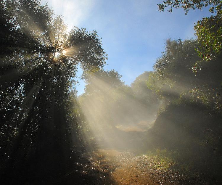 Rancho San Antonio Regional Park