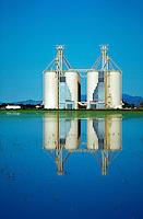 Grain elevators reflected in flooded rice field.