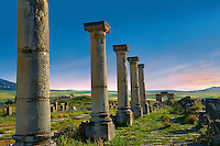 Columns along The Decumanus Maximus, the main street looning south towards the Arch of Caracalla. Volubilis Archaeological Site, near Meknes, Morocco