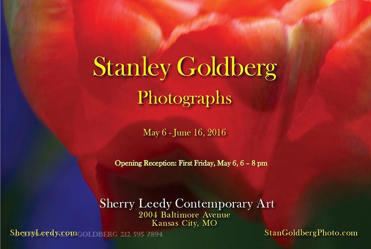 Sherry Leedy Contemporary Art Exhibition 2016