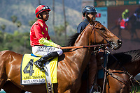 ARCADIA, CA APRIL 8: #4 Abel Tasman ridden by Mike Smith in the post parade of the Santa Anita Oaks (Grade 1) on April 8, 2017 at Santa Anita Park in Arcadia, CA (Photo by Casey Phillips/Eclipse Sportswire/Getty Images)