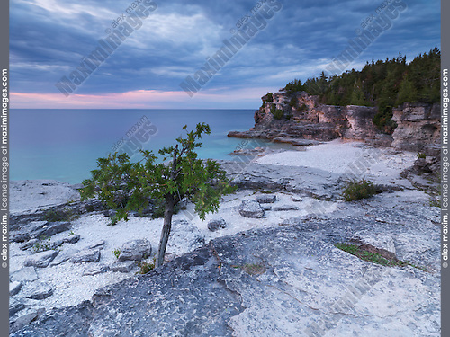 Beautiful sunset scenery of Georgian Bay rocky shore and cliffs inhabited by cedar trees. Bruce Peninsula National Park, Ontario, Canada.