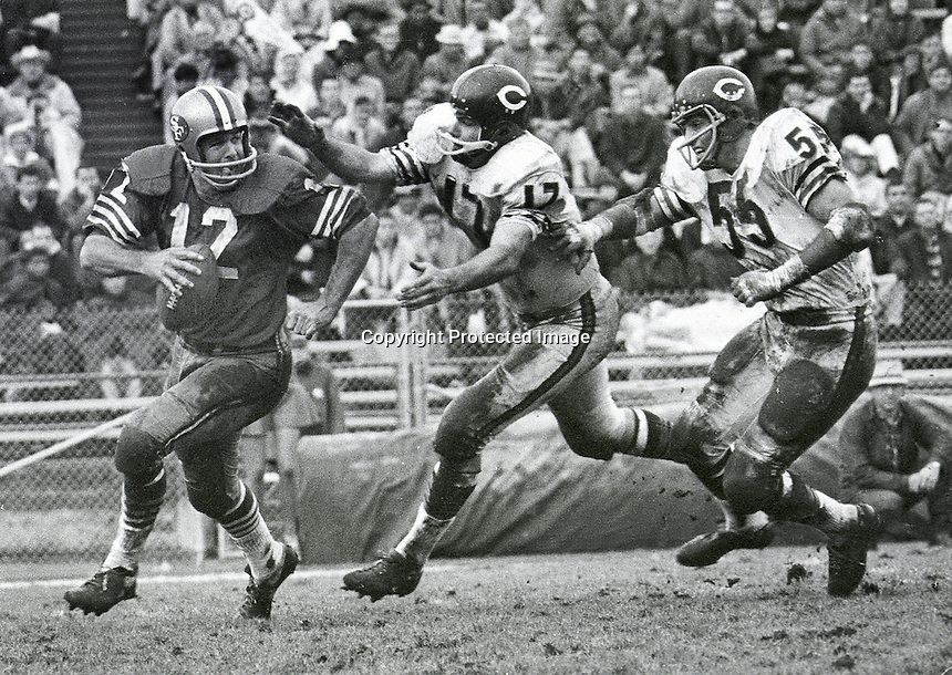 49er QB John Brodie chased by Bear's #17 Richie Petitbon and #55 Doug Buffonel. 1967 photo copyright by Ron Riesterer..