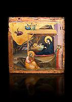 Gothic painted panel of the Nativity scene by Taddeo Gabbi of Florence, circa 1325, tempera and gold leaf on wood. National Museum of Catalan Art, Barcelona, Spain, inv no: MNAC 212807. Against a black background. <br /> Taddeo Gabbi, one of Giotto's most brilliant disciples, painted this Nativity when he was still part of Giotto's workshop. The painting has many of Giotto's hallmarks such as  spatial illusionism or the reality of figures that can be seen in the nativity of the Peruzzi Chapel.<br /> <br /> SPANISH<br /> <br /> Taddeo Gabbi, uno de los discipulos mas brillantes de Giotto, debio pintar esta Natividad cuando aun formaba parte del taller del maestro. En ella se ven las conquistas de la &quot;revolucion giottesca&quot;, como el illusioismo espacial o el realismo de las figuras. Maria arropa a Jesus dentro del establo, mientras los sobrevuela un grupo de angeles. La posicion de uno de ellos y la presencia de una oveja indican que la composicion se completaba a la izquierda con el Anuncio a los pastores. En primer termino aparecen un pensativo Jose y las dos parteras que susurran, un recurso ya utilizado pr Giotto en los frescos de la Capilla Peruzzi.