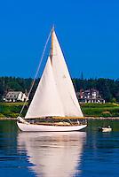 Sailboat, Castine harbor, Penobscot Bay, Maine USA