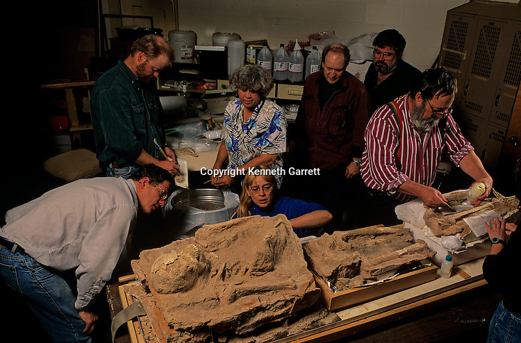 Peopling the Americas; Dennis Stanford (center), Arch Lake Woman, Eastern New Mexico University, Portales New Mexico,  Smithsonian Institution, skeleton excavated with its bed of sand in 1967, older than 11000 years old.