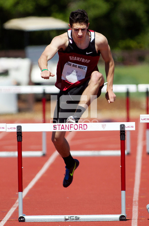 Stanford, CA., April 20, 2013,--Stanford's Jack Shumway runs in the 119 Big Meet at Cobb Track and Angell Field at Stanford University.