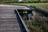 A view from an observation platform includes a piling with three bolts that to some imaginations could be the face of a troll hiding under the platform.
