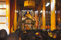 Tibetan monks in prayers at Namgyl Monastery.