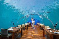 Maldives, Rangali Island. Conrad Hilton Resort. Couple in Ithaa underwater restaurant (MR).