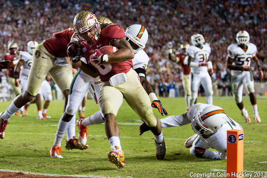 TALLAHASSEE, FL 11/2/13-FSU-MIAMI110213CH-Florida State's Devonta Freeman scores his third touchdown against  Miami during second half action Saturday at Doak Campbell Stadium in Tallahassee. The Seminoles beat the Hurricanes 41-14.<br /> COLIN HACKLEY PHOTO