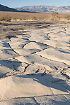 Death Valley National Park, California; polygon-cracked clay from an ancient lakebed forms the floor of the Mesquite Flat Sand Dunes, with the Panamint mountain range in the background