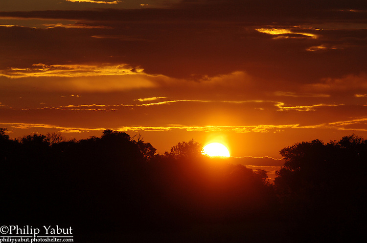 Sunset in the Kwara Reserve, Botswana.