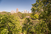 The view towards Fifth Avenue from the highest point in the Hallett Nature Sanctuary in Central Park in New York on Monday, May 16, 2016. Closed since 1934 the  4 acre natural landscape in the middle of the city is a bird sanctuary and will be opened for limited times to the public only 20 people entering at a time. Hundreds lined up to be let in to admire the landscape. (© Richard B. Levine)
