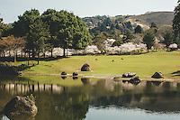 Nara / Japan 2014