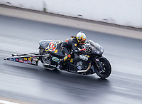 Sep 24, 2016; Madison, IL, USA; NHRA pro stock motorcycle rider Angelle Sampey during qualifying for the Midwest Nationals at Gateway Motorsports Park. Mandatory Credit: Mark J. Rebilas-USA TODAY Sports