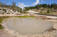 Mud Volcano theral area in Yellowstone