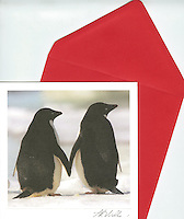 Adelie penguins, Antarctica<br />