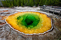 WY01857-00...WYOMING - Morning Glory Pool in the Upper geyser Basin of Yellowstone National Park.