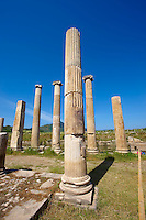 Columns around the sanctuary of Artimis with the Agora, Magnesia on the Meander arcaeological site, Turkey