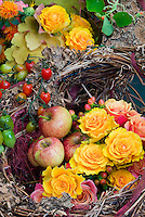 Harvest basket of apples fruits, roses, flowers, vegetables, autumn picked fall crops, from edible garden