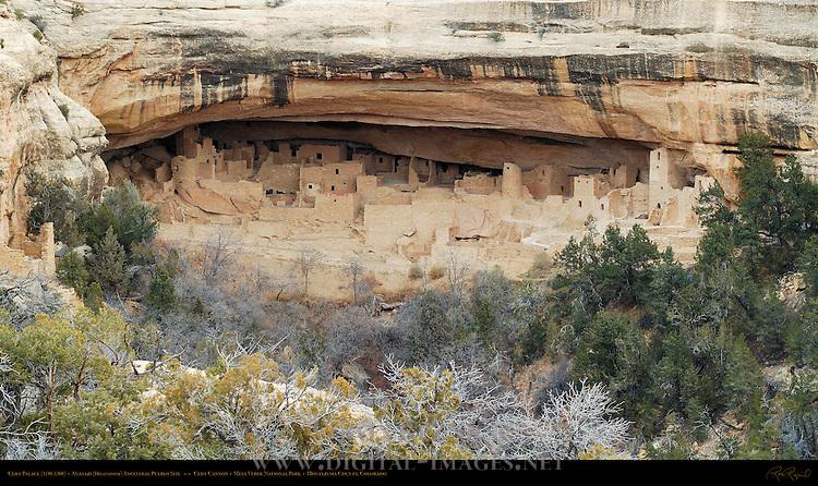 Cliff Palace Cliff Dwelling, Anasazi Hisatsinom Ancestral Pueblo Site, Cliff Canyon, Mesa Verde National Park, Colorado