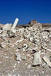 Whale bones strewn on the beach in The Namib Naukluft desert. In the distance an abandoned diamond mine. This area is owned by De Beers and is completely restricted. It is said that diamonds can be found lying around on the surface of the ground.