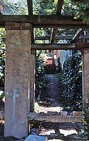 Berkeley CA:  A hillside walk, south of Rose Walk, Euclid.  Photo '78.