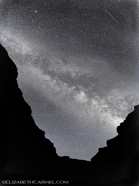 Midnight Silhouette