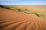 Sand dune in the Simpson Desert National Park near Birdsville, Queensland, Australia