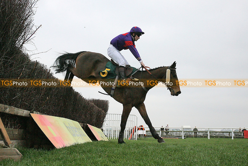 Moonwolf ridden by Mr J S Day jumps the last during the William Bulwer-Long Memorial Novices Fox Hunters Chase  at Fakenham Racecourse, Norfolk - 16/03/12 - MANDATORY CREDIT: Gavin Ellis/TGSPHOTO - Self billing applies where appropriate - 0845 094 6026 - contact@tgsphoto.co.uk - NO UNPAID USE.