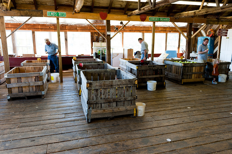 Visitors to Peaks of Otter Winery and Johnson Orchards visit the same building; apples and other fruit are offered for sale in large wooden crates on one side of the store.