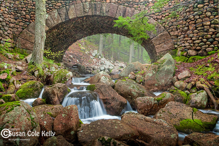 The Cobblestone Bridge on Jordan Stream in Acadia National Park, Downeast, ME, USA