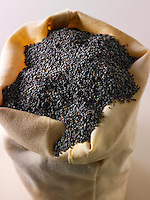 Poppy Seeds- Stock Photos