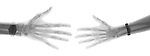 X-ray image of male and female hands (black on white) by Jim Wehtje, specialist in x-ray art and design images.
