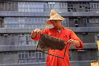 Hong Kong's Urban Beekeeper