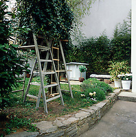 A rear garden with an informal lawn area bordered by a low stone wall. The garden has a useful shed and ladders lean against a tree