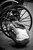 A rickshaw puller is seen fixing the wheels at a workshop in Calcutta, India. 93 out of every 100 rickshaw pullers are homeless. They sleep after the city sleeps and wake up before everyone else does. Many of them are the sole bread earners for their family. Many plus 40. Many minus any other specialisation for any other job. Of the twenty four thousand rickshaw pullers, only 387 have licenses. .Many rickshaw pullers earn a meagre wage of 100-150 rupees (US $ 2.25-3.5) a day of which they have to give a daily rickshaw rent of 60 (US$ 1.35) rupees to the agent at the end of the day.