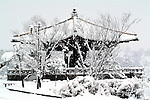 The first snow of the season covers a pagoda in a park adjacent to the demilitarized zone, South Korea.