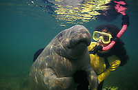 Photo LR-398. West Indian Manatee (Trichechus manatus) and Melissa Cole, Model Released. Florida, USA..Photo Copyright © Brandon Cole. All rights reserved worldwide.  www.brandoncole.com.This photo is NOT free. It is NOT in the public domain..Rights to reproduction of photograph granted only upon payment in full of agreed upon licensing fee. Any use of this photo prior to such payment is an infringement of copyright and punishable by fines up to  $150,000 USD...Brandon Cole.MARINE PHOTOGRAPHY.http://www.brandoncole.com.email: brandoncole@msn.com.4917 N. Boeing Rd..Spokane, WA  99206  USA.tel: 509-535-3489..