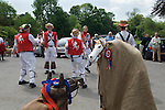 Hooden Horse East Kent Morris Men dancing in square outside the church of St Peter and St Paul Charing Kent UK. Spring Bank Holiday Monday. David Rivers inside Invicta the white Hooden Horse, so called after the emblem of Kent. The other is 'Brown horse with no name'