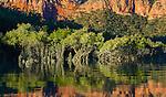 Prince Regent River, Kimberley, Western Australia