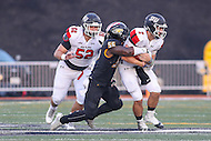 Towson, MD - September 9, 2016: Towson Tigers linebacker Diondre Wallace (56) sacks St. Francis (Pa) Red Flash quarterback Zack Drayer (7) during game between Towson and St. Francis at Minnegan Field at Johnny Unitas Stadium  in Towson, MD. September 9, 2016.  (Photo by Elliott Brown/Media Images International)